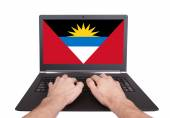 Hands working on laptop, Antigua and Barbuda — Stock Photo