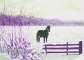 Frisian horse in a snowy meadow — Foto de Stock