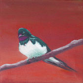Painting, adult swallow  — Stock Photo