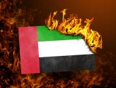 Flag burning - United Arab Emirates — Stock Photo