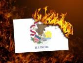 Flag burning - Illinois — Stock Photo