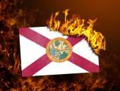 Flag burning - Florida — Stock Photo
