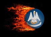 Bize ateş - Louisiana ekmek kırıntısı ile bayrak devlet — Stok fotoğraf