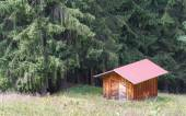 Typical house in the Swiss alps — Stock Photo