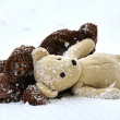 Stuffed animal toy teddy bear in winter snow — Stock Photo #62013295