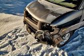 Car crash with deer — Stock Photo