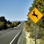 Deer Crossing Road Sign — Stock Photo #68806543