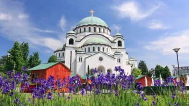 Beautiful Flowers and Temple of Saint Sava — Stok video