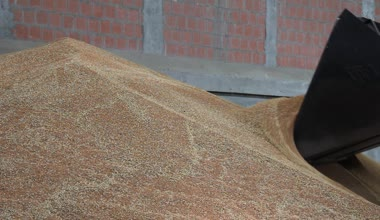 Wheat in the Silo, loader working — Stock Video