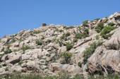 Views of La Pedriza — Stock Photo