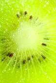 Frozen kiwi background — Stock Photo
