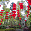 Red umbrellas hanging in a garden on Nanhuashan, Fenghuang ancient village, China — Stock Photo #65573939
