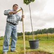 Man planting tree — Stock Photo #63558655
