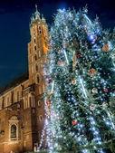 Outdoor christmas tree — Stock Photo
