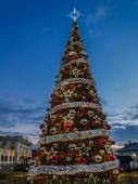 Giant Christmas Tree — Stock Photo