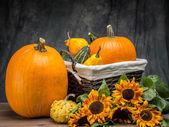 Autumn crops — Stock Photo