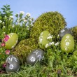 Easter eggs in grass — Stock Photo #68924099