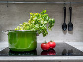 Stewpot with vegetables on induction cooker — Stock Photo