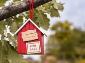 Birdhouse for sale — Stock Photo