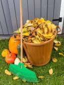 Autumn garden cleaning — Stock Photo
