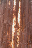 Tin Roof abstract rusty  — Stock Photo