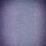 Reptile leather texture — Stock Photo #63733221