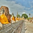 Wonderful Twilight time in Ayutthaya Thailand Temple — Stock Photo #71533715