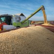 Harvesting of soybean — Stock Photo #55098351