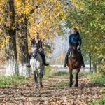 horse ride — Stock Photo #57787905