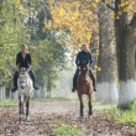 Horse ride — Stock Photo #57787995