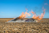 Burning straw — Stock Photo