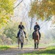 Girls  riding a horse — Stock Photo #67365943