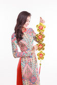Beautiful Vietnamese woman wearing impression ao dai holding lucky decorate object for celebrate lunar new year — Stock Photo