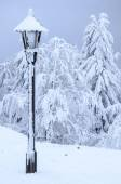 Lamp covered in snow — Foto Stock
