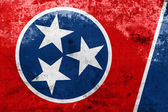 Tennessee State Flag with a vintage and old look — Foto Stock