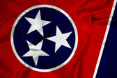 Waving Tennessee State Flag — Stock Photo