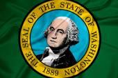Waving Washington State Flag — Stock Photo