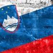 Slovenia Flag painted on grunge wall — Stock Photo #52964233