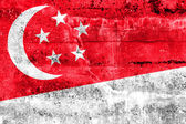Singapore Flag painted on grunge wall — Stok fotoğraf