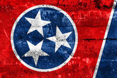 Tennessee State Flag painted on grunge wall — 图库照片