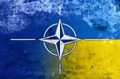 Grunge Nato and Ukraine Flag — Stock fotografie