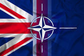Waving Nato and UK Flag — Foto Stock