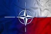 Waving Nato and Poland Flag — Photo
