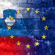 Slovenia and European Union Flag painted on grunge wall — Stock Photo #54034763