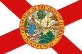 フロリダ州の旗。クローズ アップ. — ストック写真