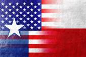 USA and Texas State Flag painted on leather texture — Stock Photo