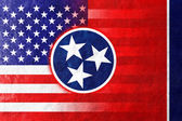 USA and Tennessee State Flag painted on leather texture — Photo