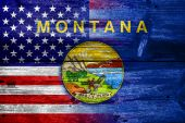 USA and Montana State Flag painted on old wood plank texture — Stock Photo