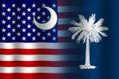 Waving USA and South Carolina State Flag — 图库照片