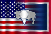 Waving USA and Wyoming State Flag — Stock Photo